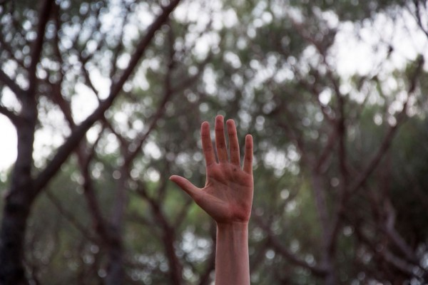 Foto Daniela D'Andreamatteo Alta Qualità